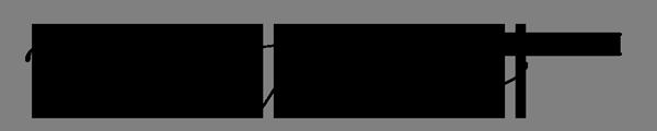 Tamara Ireland Stone Retina Logo